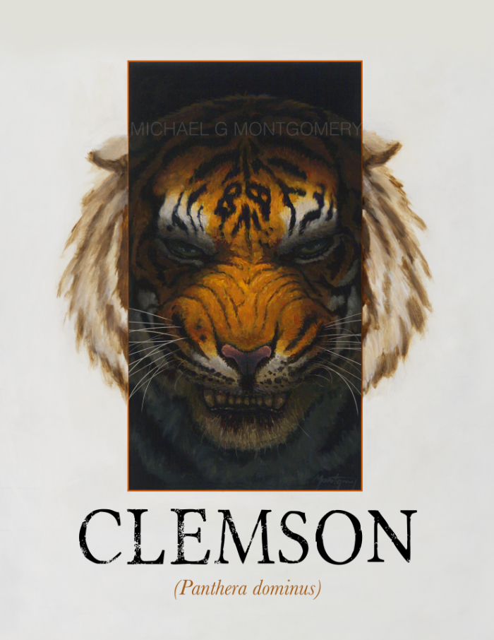 The Clemson Tiger showing malace.
